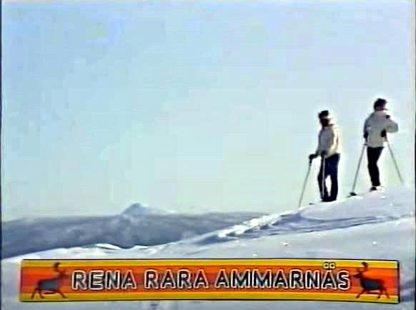 Rena rara Ammarnäs.JPG